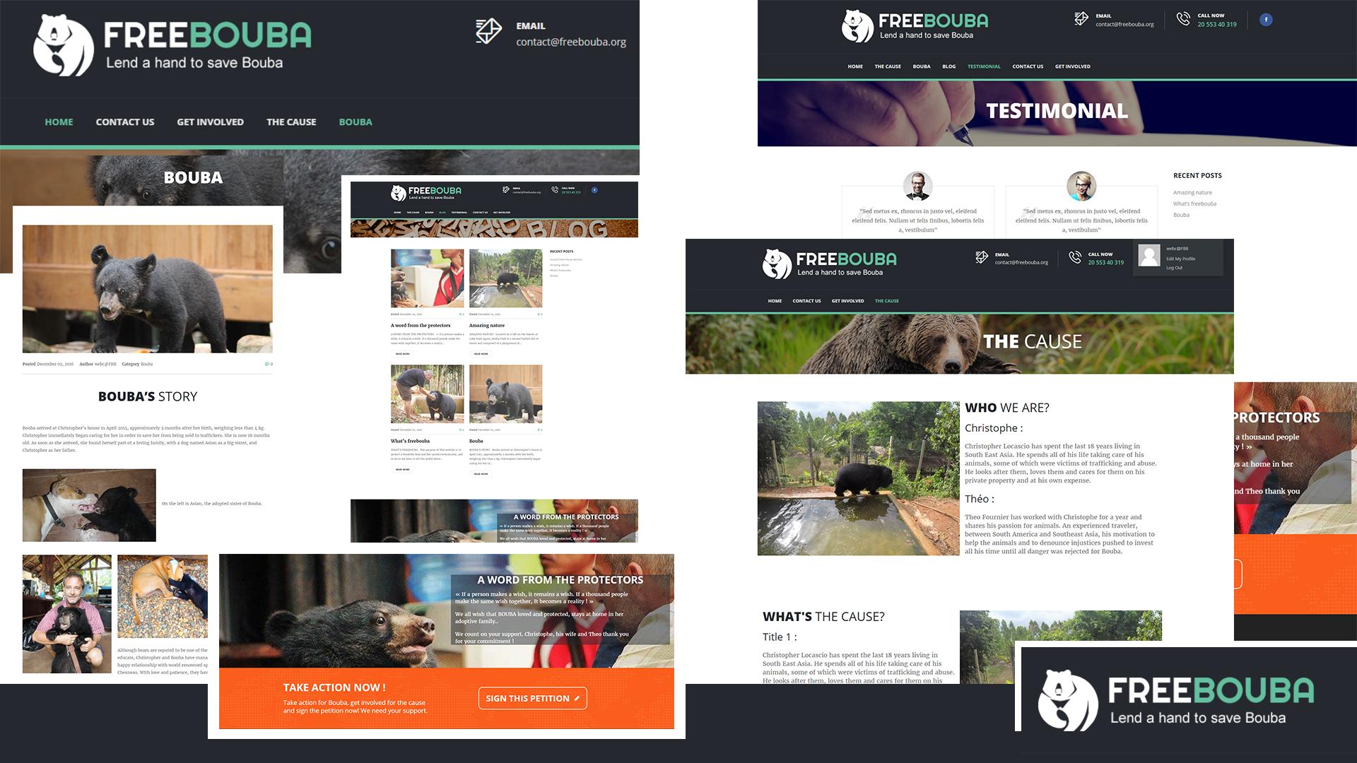 Conception Site Web, Site Vitrine, Site E-Commerce